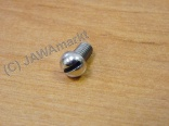 Screw for Oil control in Engine - polished sainlees steel